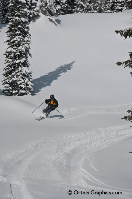 Photo of a skier cutting through Fresh Snow